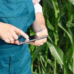 asesoramiento tecnico fertilizantes