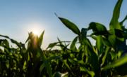 Novedades Agrar Activ