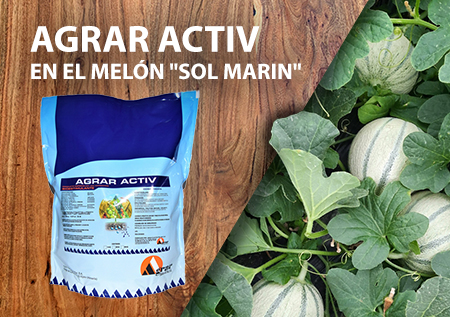 Agrav Activ en el melón sol marin